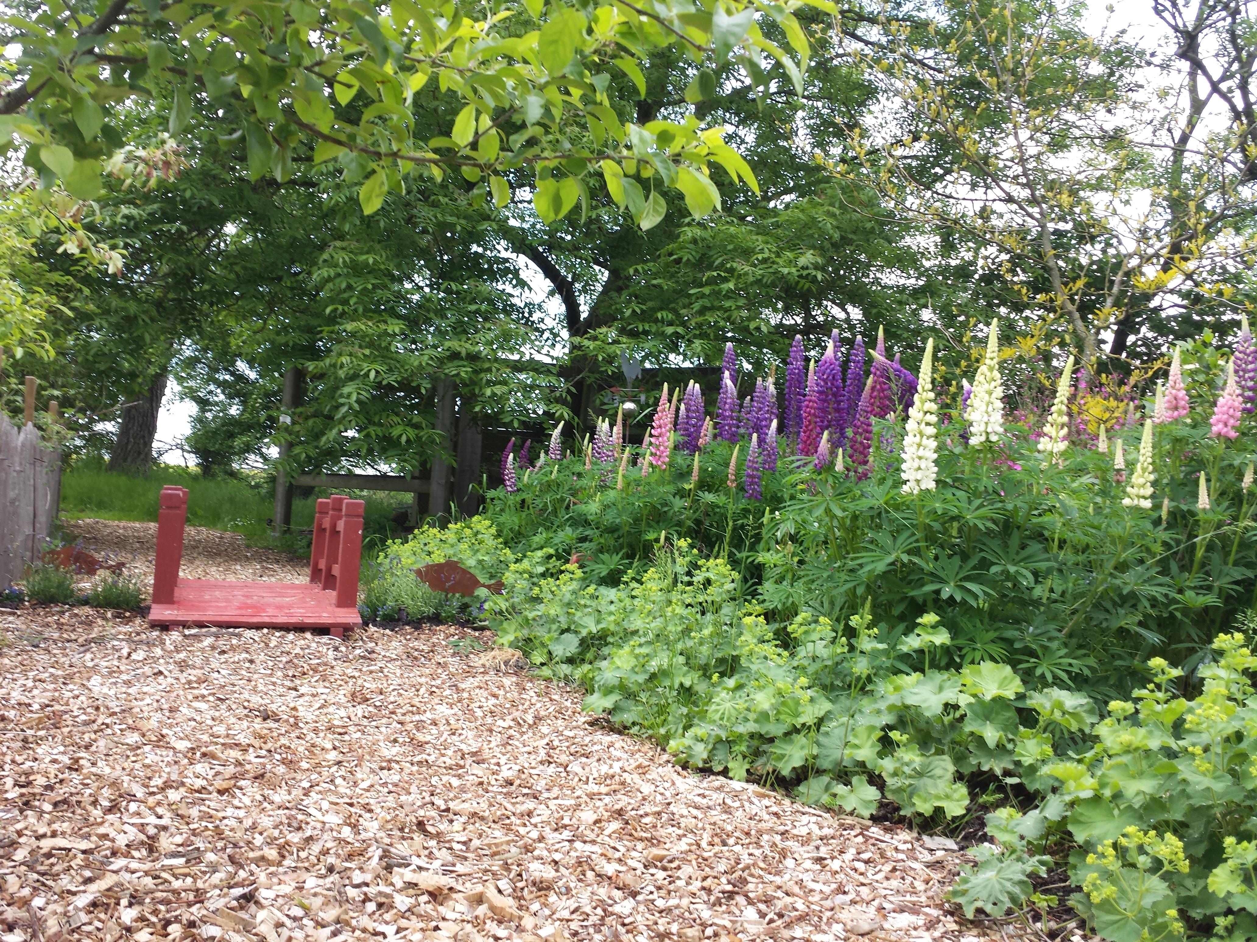 der park - bauernhof-barfussgarten, Garten ideen